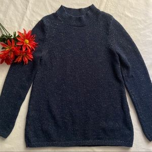Ann Taylor Factory Knit Sweater